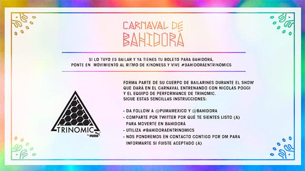 bahidora1